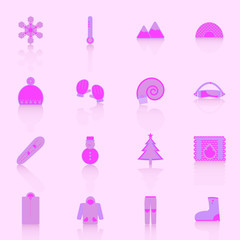 Winter icons with reflect on pink background