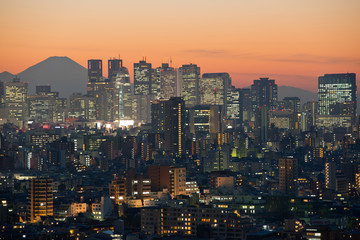 Tokyo skyline and Mount Fuji at dusk
