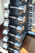 Sports weight  dumbbells set  in healthy care fitness room  use