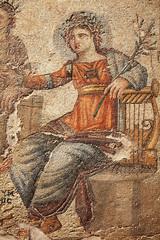 Apollo Mosaic, Paphos Cyprus