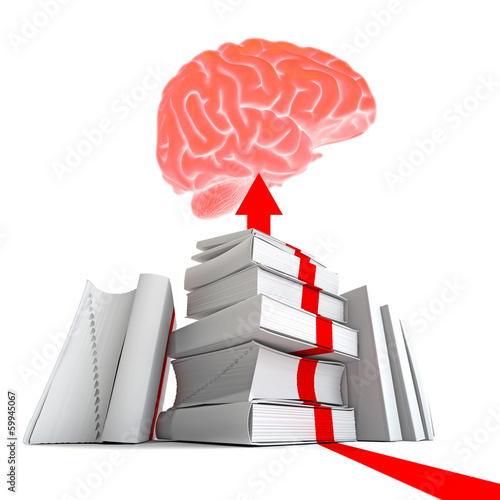 Roter Faden zm Wissen