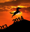 Silhouette horse jumping over 2014