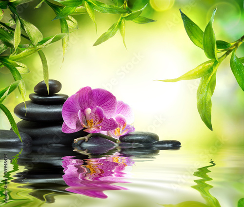 alternative massage in bamboo garden on water|59946494