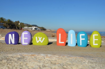 Future life,new life on colourful stones