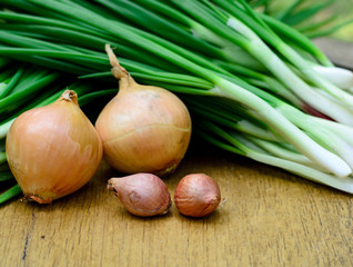 Fresh green shallot and onion for cooking