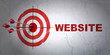 Web design concept: target and Website on wall background