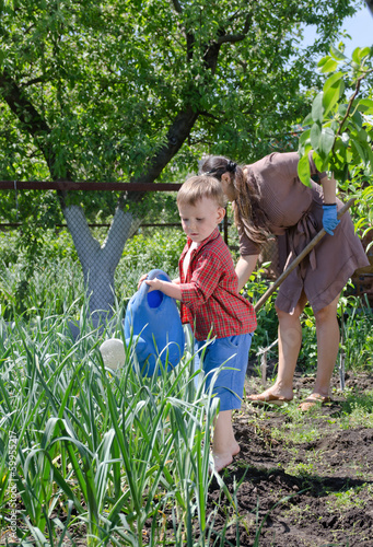 Young boy watering the vegetable garden