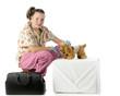 Pretending Pet Vet