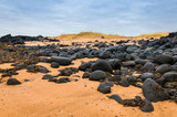 Sand beach with black rocks in Iceland - Snaefellsnes peninsula poster