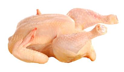fresh chiken