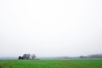 Field with  trees on foggy day