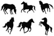 Sets of silhouette horses, create by vector