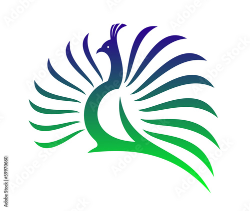 Beautiful stylised vector peacock