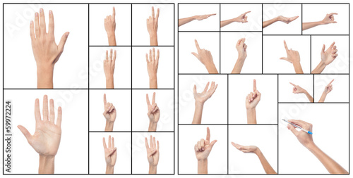 Collage of woman hands, various gestures.