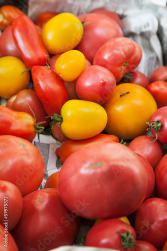 Bunch of various sorts of red and yellow tomatoes