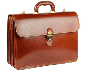Ginger Briefcase