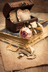 dry rose, old book