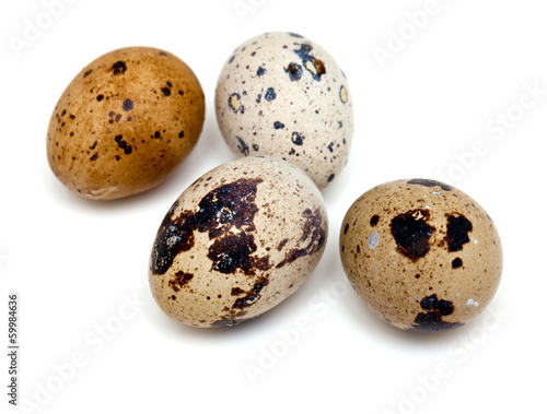 quail eggs isolated on white background