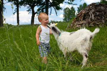 little boy and baby goat