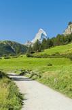 Zermatt, Schweizer Berge, Bergwiesen, Wanderweg, Furi, Schweiz poster