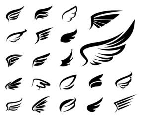 Wings vector  set.