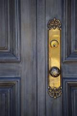 Old antique door and door handle