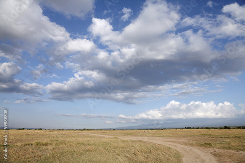 Beautiful vast Savanna grassland at Masai Mara