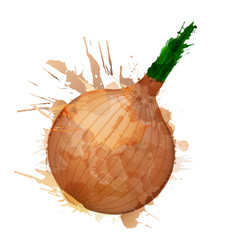 Onion made of colorful splashes on white background