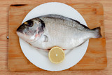 Healthy fresh fish on wooden board