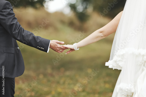 Groom and bride holding hands, wedding picture.