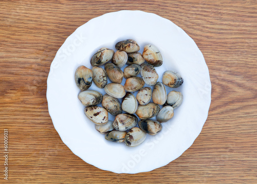 Delicious clams prepared for cooking