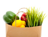 Paper shopping eco bag with green grass,fruit and vegetable