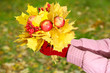 Bouquet of yellow leaves in hands