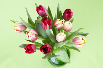 Red and yellow tulips in a vase
