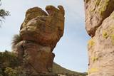 Chiricahua national monument, Arizona, USA poster