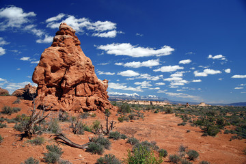 Arches National Park near Moab,USA