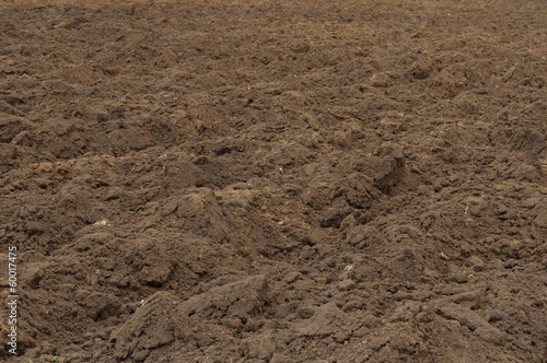 Ploughed field in late autumn