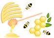 Honey comb, bees, bee hive and honey dipper