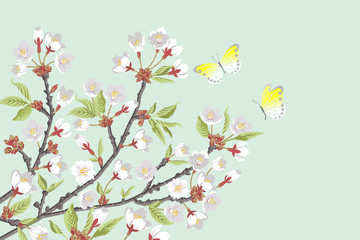 Cherry Blossom branches and two butterflies