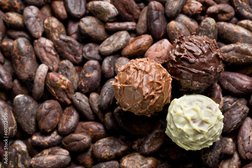 chocolate truffles on cocoa beans