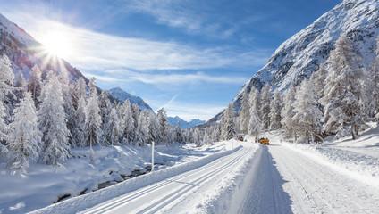 Val Roseg - Engadina (CH) - pista di fondo con slitta