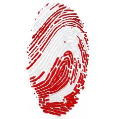 3d detailed human thumb print