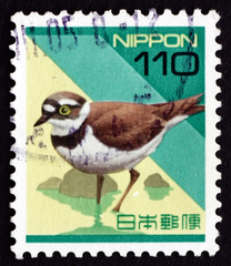 Postage stamp Japan 1992 Plover, Wading Bird