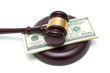 gavel and money closeup