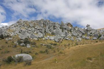 New Zeland landscape