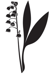 Silhouette lily of the valley flower