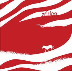 Zebra background - vector illustration
