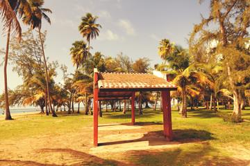 Hot Tropical Beach With Blue Sky
