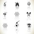 Obrazy na płótnie, fototapety, zdjęcia, fotoobrazy drukowane : Honey and beee icons set