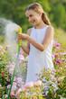 Summer garden, watering -  girl watering roses